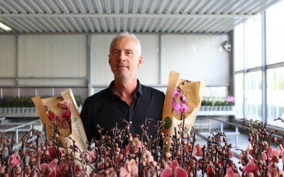 Duurzame lijn Phalaenature van Wooning Orchids vanaf nu verkrijgbaar